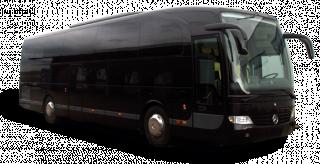 VIP BUS 40 / 50 / 55 pax